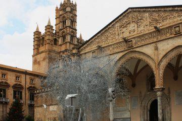 albero della Pace Palermo
