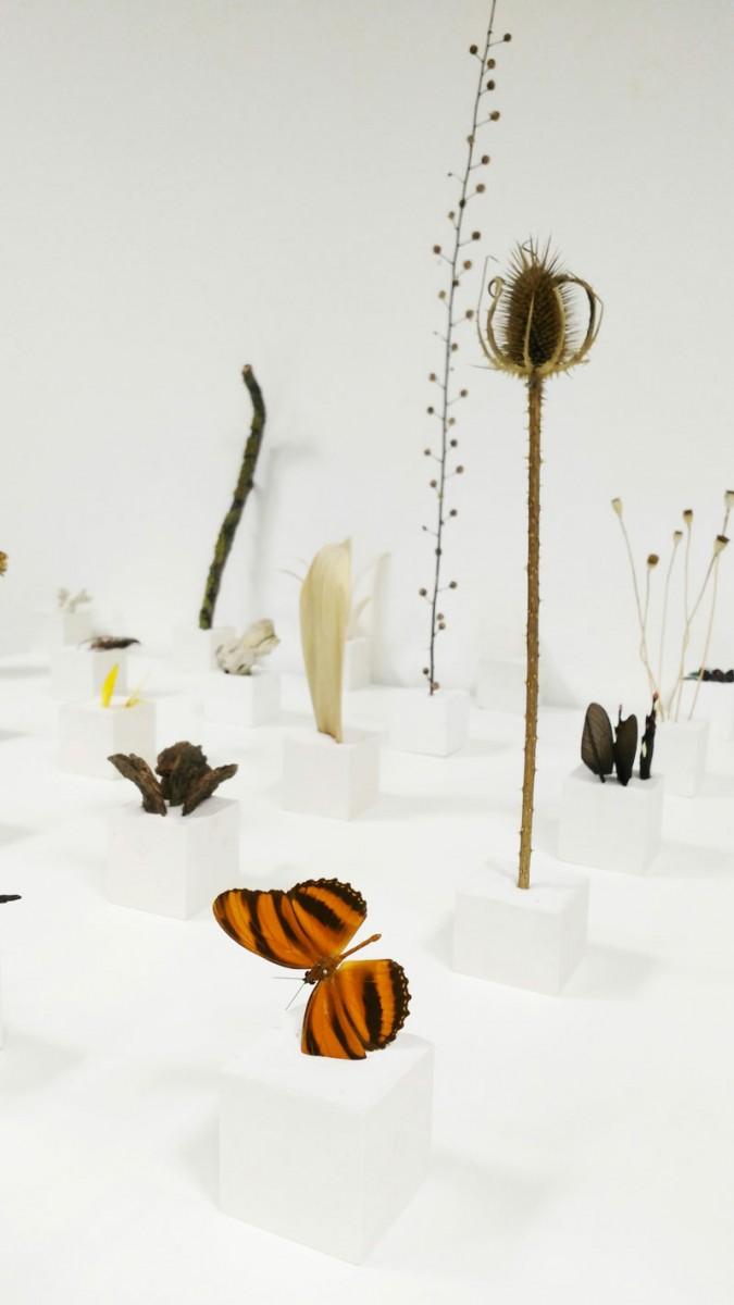 artrooms-a-roma-Alice-Padovani