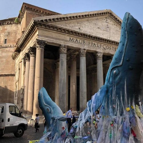 balena greenpeace al pantheon
